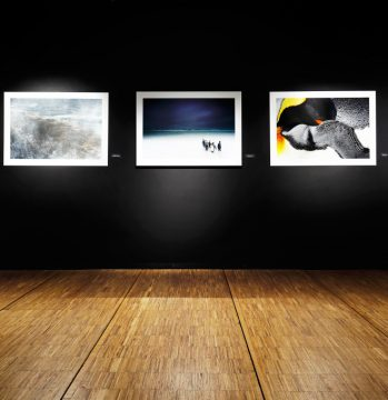 Vue du Salon des Beaux Arts • La section Photographie