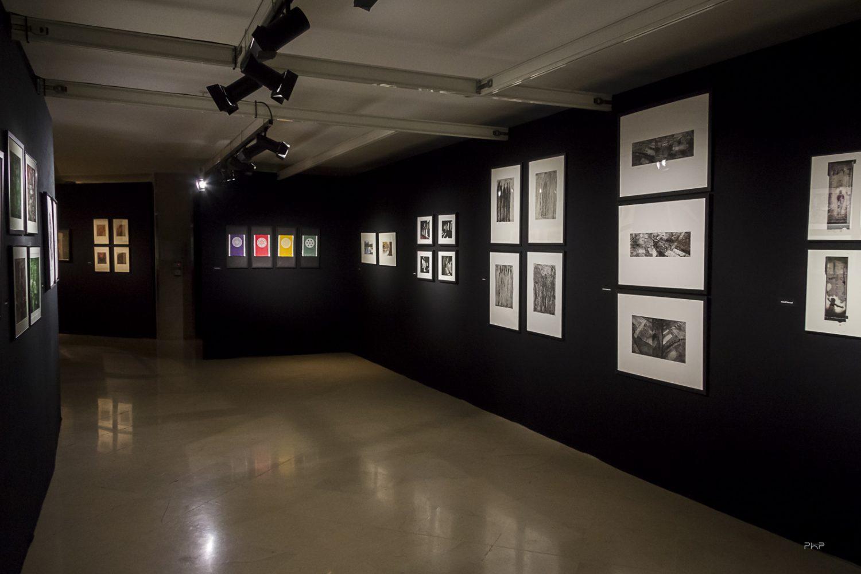Vue du Salon des Beaux Arts • la section gravure